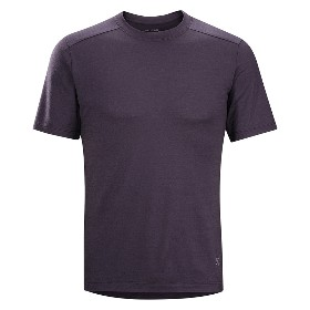 ARCTERYX/始祖鸟 男款羊毛短袖T恤 A2B T-Shirt M 17541 【2015春夏新款】